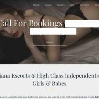 Ludhiana Escorts (Priya) Call Girls in Ludhiana - priyadeswal.com