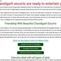 Chandigarh escorts Provide The Best girls for sex - chdescorts.com