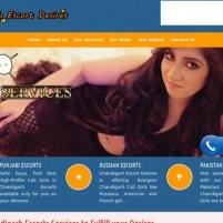 Chandigarh Escorts Service  VIP Escorts  Call Girls in Chandigarh - rashmibhargav.in